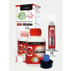 Endo-Solution